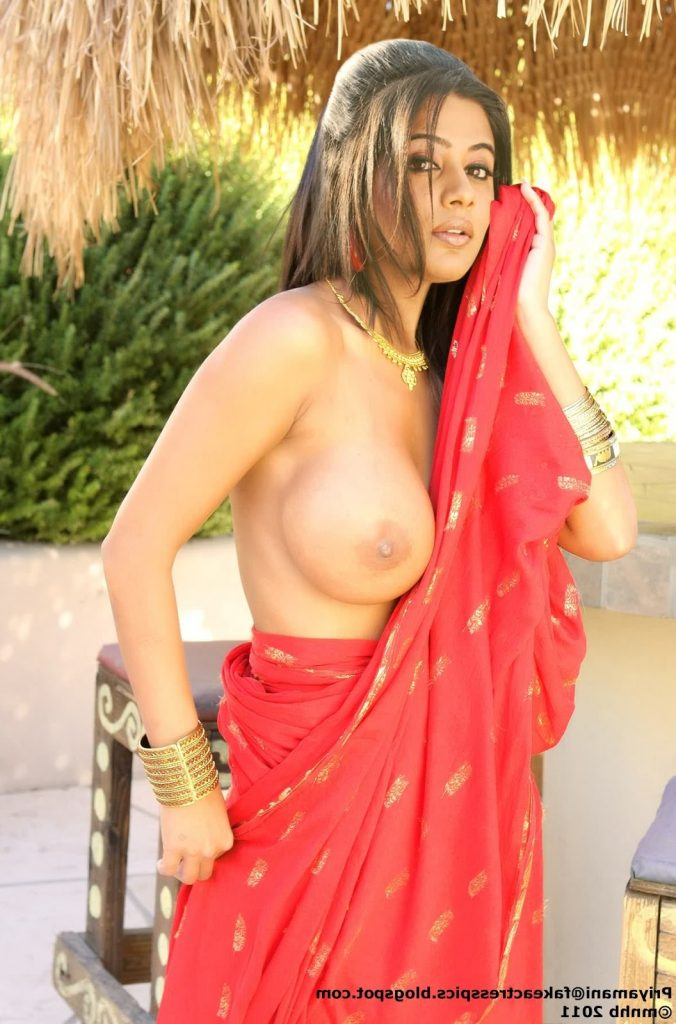 Priyamani Nude 4 676x1024 - South Actress Priyamani Nude Naked Porn Photos