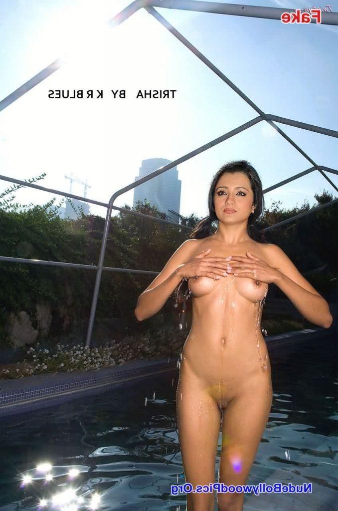 Trisha nangi porn pics 10 678x1024 - Trisha Krishnan Nude Porn Sex Fucking Pics